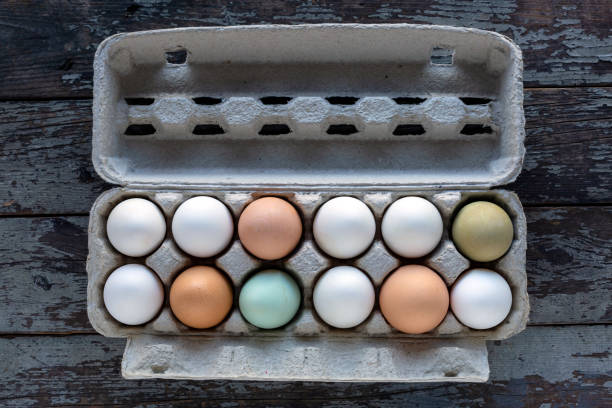 One Dozen Organic Fresh Eggs – Foto