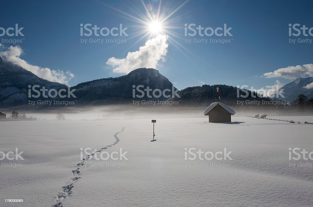 One early winter morning after a heavy snow storm royalty-free stock photo