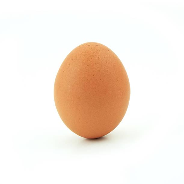 one egg isolated on white background one egg isolated on white background egg white stock pictures, royalty-free photos & images