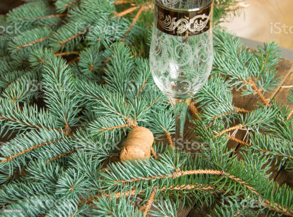 One empty glass of champagne and the cork is on the background of fir branches, Christmas background stock photo