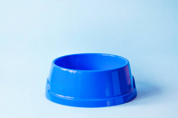 One empty pet blue bowl on an blue background picture id1158261037?b=1&k=6&m=1158261037&s=612x612&w=0&h=x9q0d731 kgdzue n9uwtonmaaecaxjvabkp72tfgwk=
