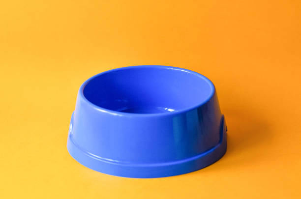 One empty pet blue bowl on an orange background picture id1147498016?b=1&k=6&m=1147498016&s=612x612&w=0&h=e yems 9wfiqohky2 tk2zwusq1xmgifymnpa5mrxc0=