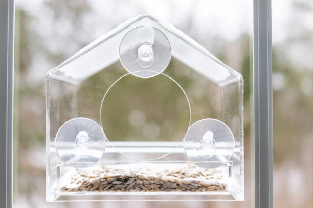 One empty small glass plastic bird feeder with suction cups against window closeup during winter snow in Virginia, snowflakes, sunflower seeds, nobody One empty small glass plastic bird feeder with suction cups against window closeup during winter snow in Virginia, snowflakes, sunflower seeds, nobody suction tube stock pictures, royalty-free photos & images