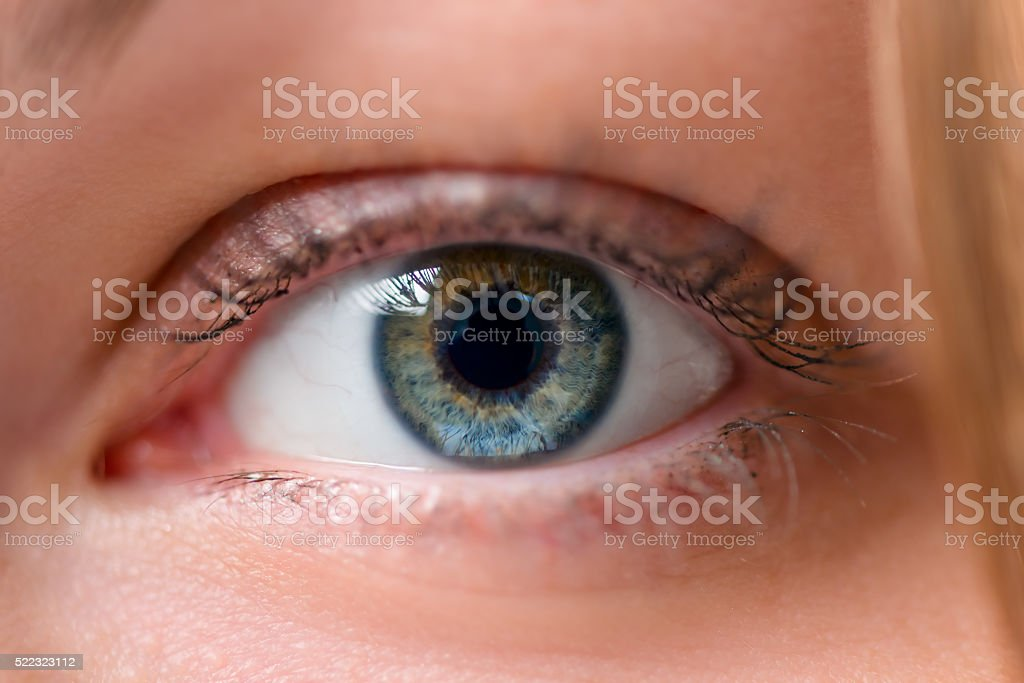 one eye in the frame close up stock photo