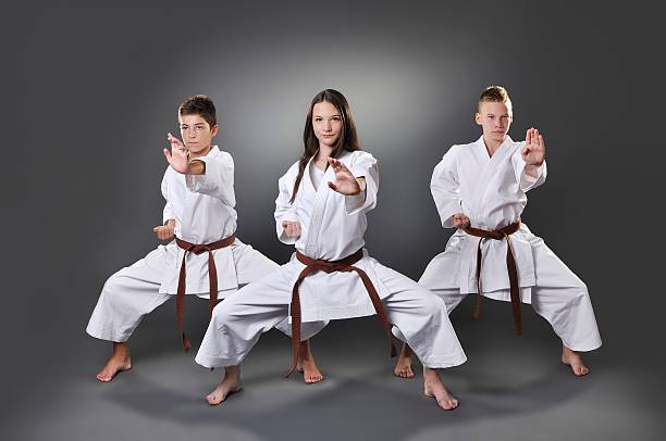 One female and two male brown belt karate doing kata – Foto