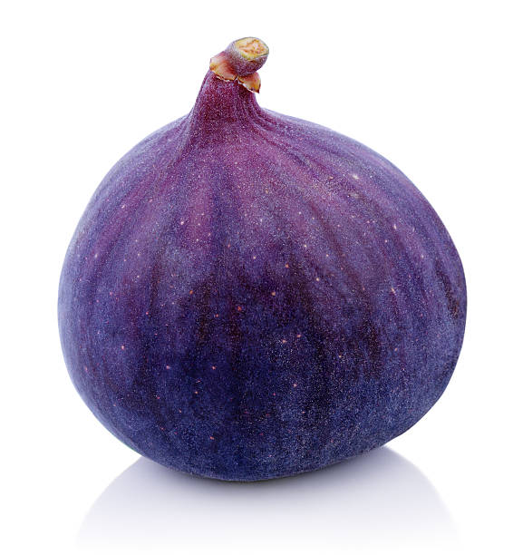 One Fig fruit on white stock photo