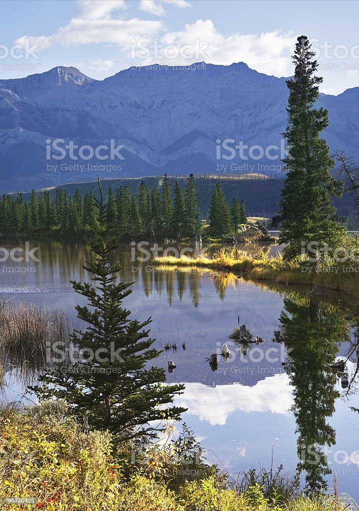 One fine morning royalty-free stock photo