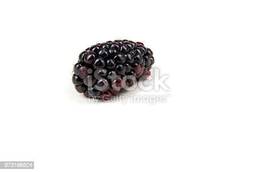 502634476istockphoto One Fresh ripe berry in closeup on isolated white background. Berries 973166524
