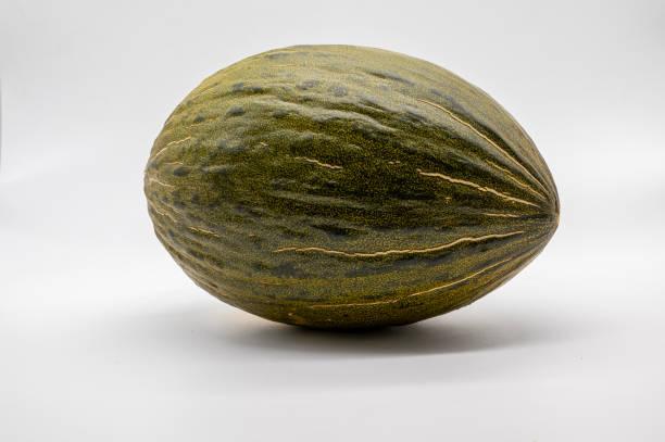 Ein frisches ganzes Piel de sapo Melone auf weißem Hintergrund – Foto