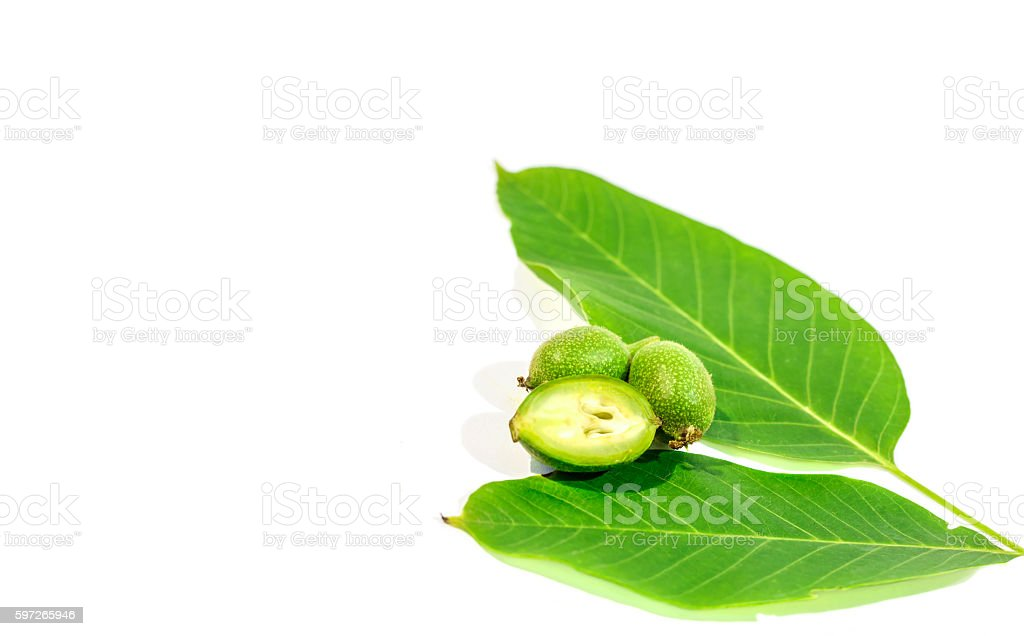 One green walnut cut on two whole walnuts and leaves royalty-free stock photo