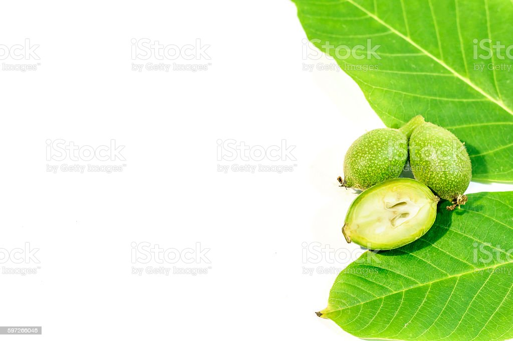 One green walnut cut on two whole walnuts and leaves photo libre de droits