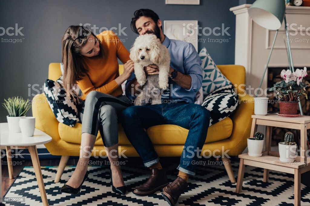 One happy family playing in the living room stock photo