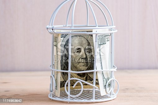 istock one hundred dollar bill in a toy prison bird cage, decorative cage on a wooden 1174953642