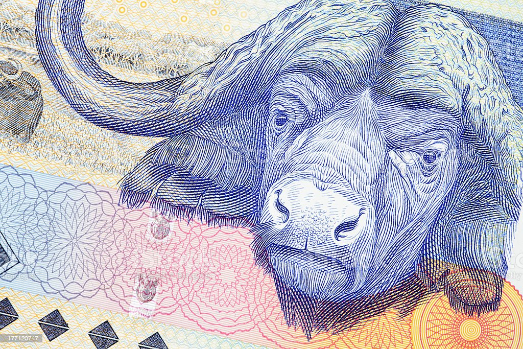 One Hundred Rand South African Bank Note stock photo