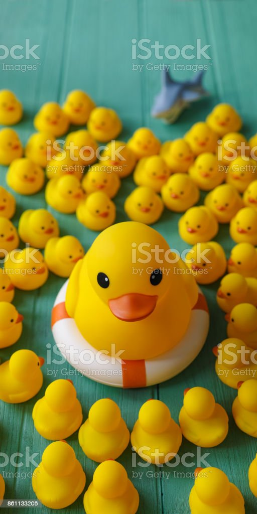 One Large Yellow Rubber Duck On A Safety Inflatable Life Ring ...
