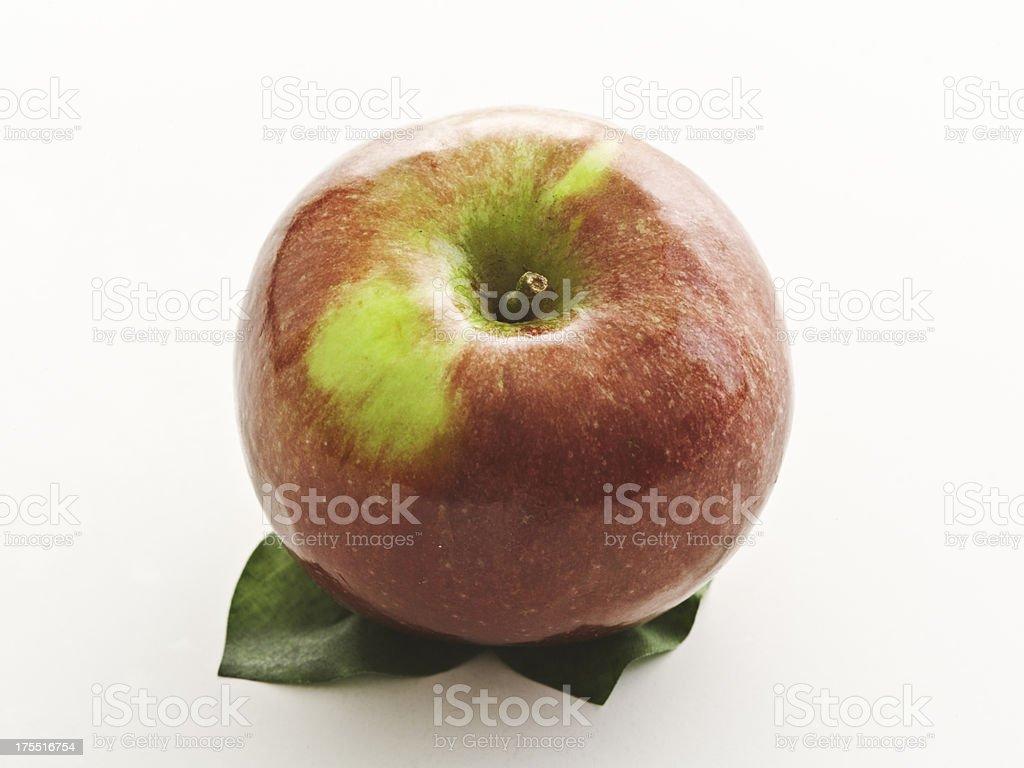 one macoun apple stock photo
