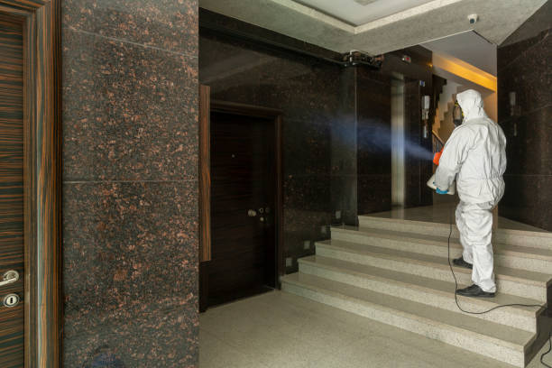One man in protective suit disinfecting the Apartment entry One man in protective suit disinfecting the Apartment entry decontamination stock pictures, royalty-free photos & images