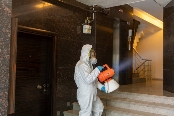 One man in protective suit disinfecting the Apartment entry stock photo