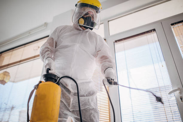 One man in protective suit disinfecting the home , and indoors space stock photo