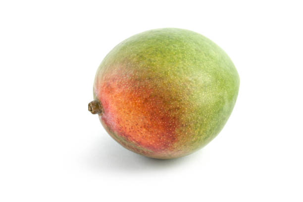 One Mango on White stock photo