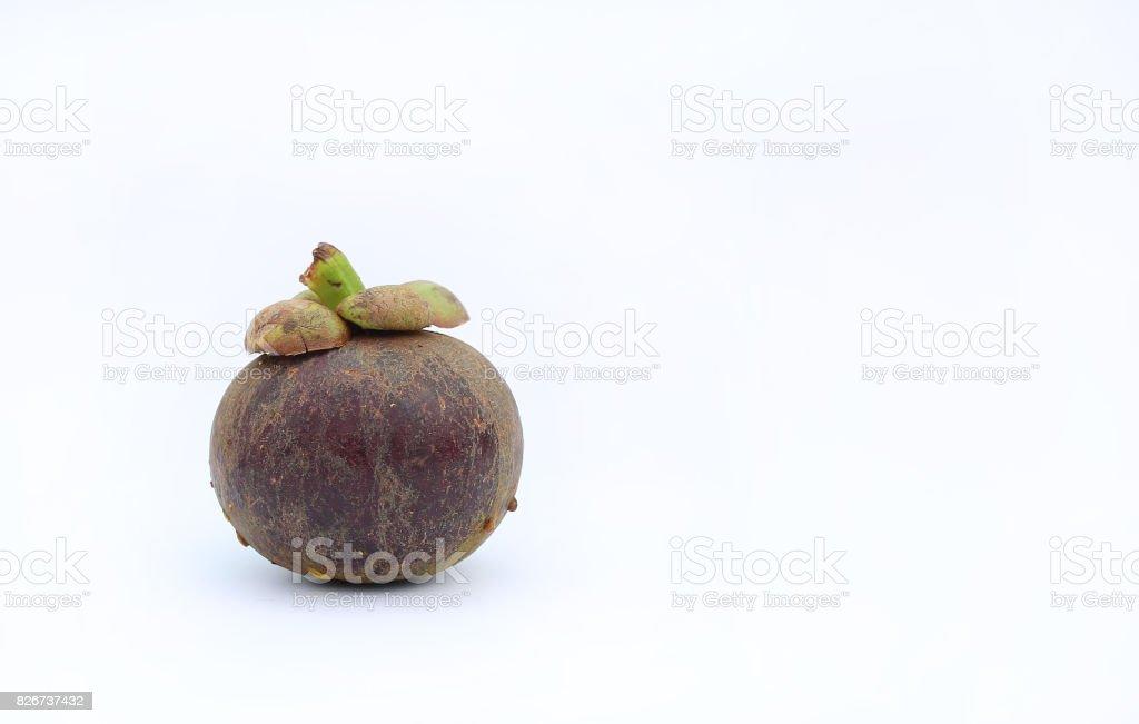 One Mangosteen fruit on white background. stock photo
