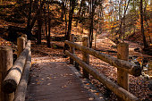 A wooden bridge with fallen leaves over the creek at Seven Bridges Trail, Grant Park, in South Milwaukee, Wisconsin