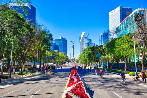 One of the main Mexico City Streets Paseo De La Reforma, a place of historic landmarks and financial office buildings