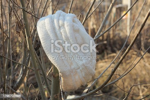 istock one old white woolen hat hanging on gray tree branches 1296702888