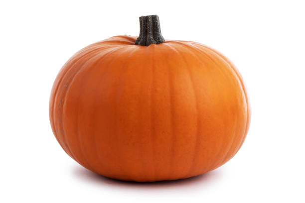 One orange pumpkin One perfect orange pumpkin isolated on white background , Halloween concept pumpkin stock pictures, royalty-free photos & images