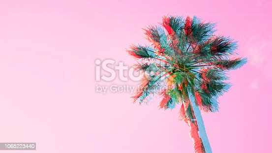 istock One palm tree on pink sky background 1065223440