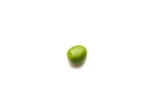 One pea stock photo
