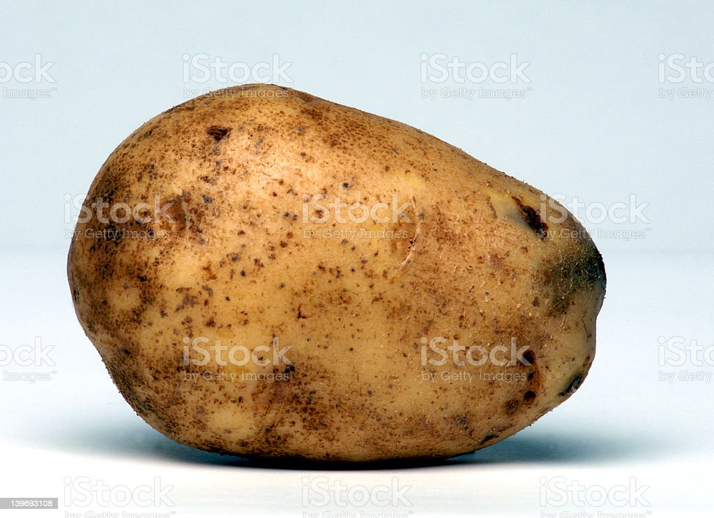 One potato royalty-free stock photo