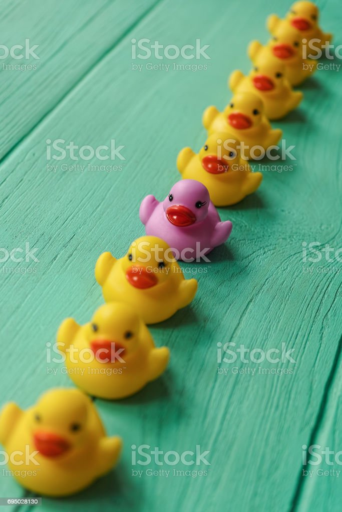 One Purple Rubber Duck In A Line Of Orderly Yellow Rubber Ducks ...