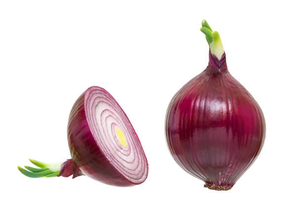 One red onion and half with the green sprout isolated on white background with clipping path, close-up One red onion and half with the green sprout isolated on white background with clipping path, close-up spanish onion stock pictures, royalty-free photos & images