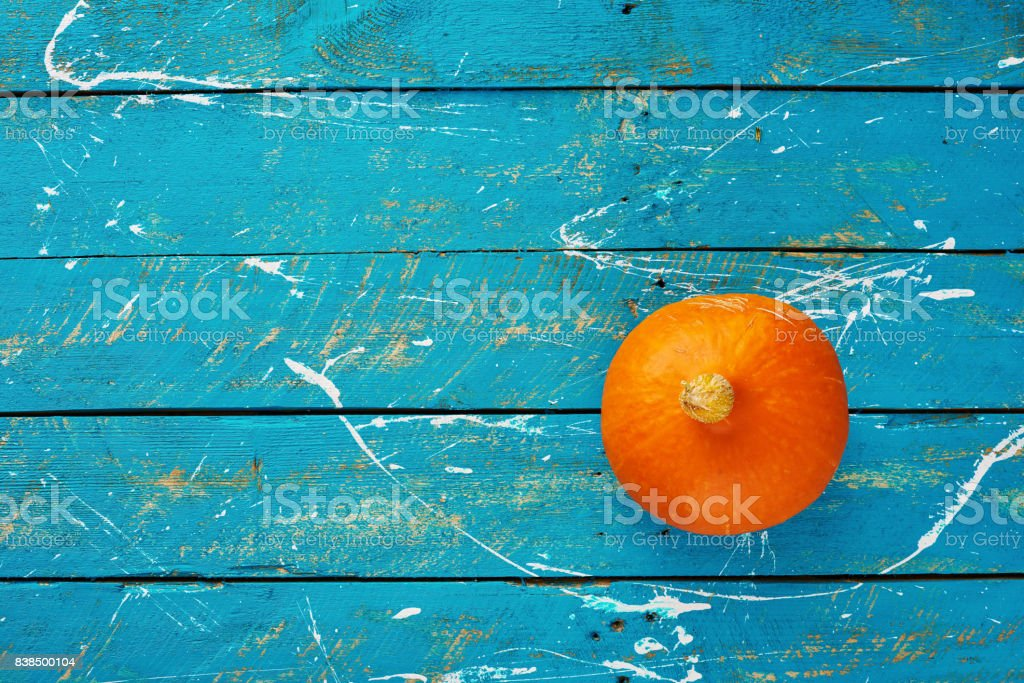 One ripe orange pumpkin stock photo