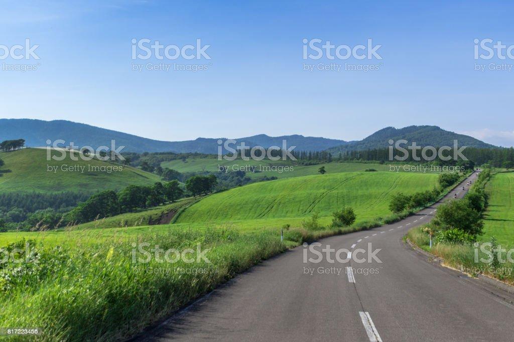 One road stock photo