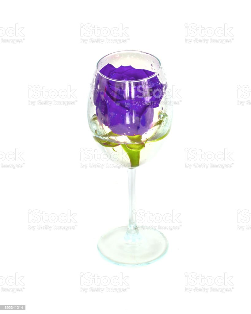 one rose in a glass on a white background, stock photo