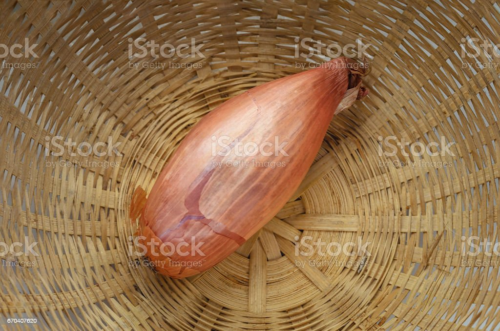 one shallot bulb in braided basket stock photo