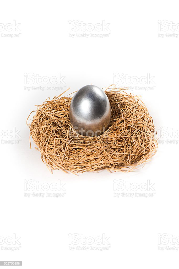 One silver egg in a nest. stock photo