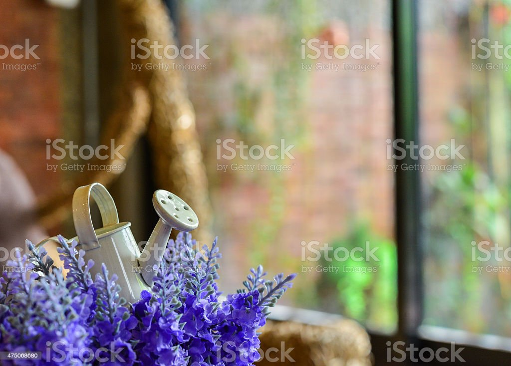 One small watering can on the artificial lavender stock photo