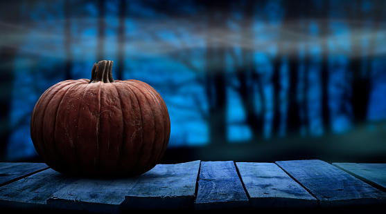 One spooky halloween pumpkin blank template on a wooden bench with a misty forest night background.