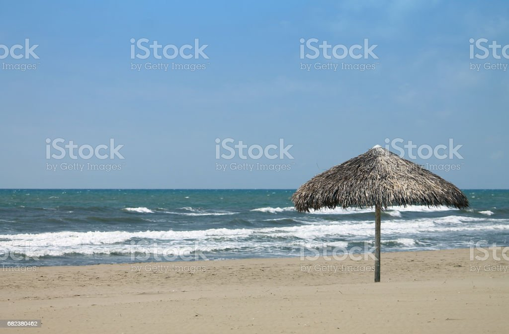 One straw umbrella at Forte dei Marmi foto stock royalty-free