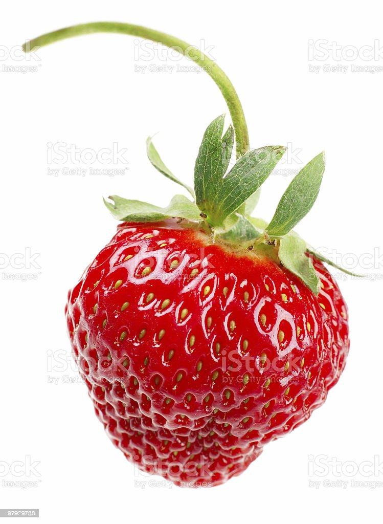 One strawberry royalty-free stock photo