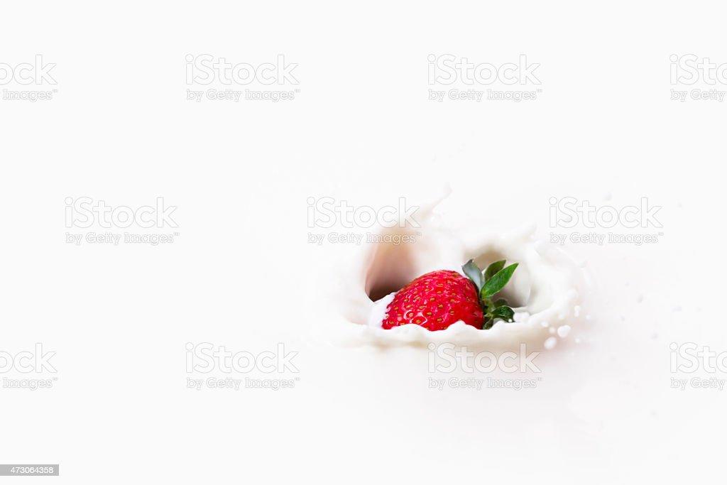 One strawberry splashes in to milk. stock photo