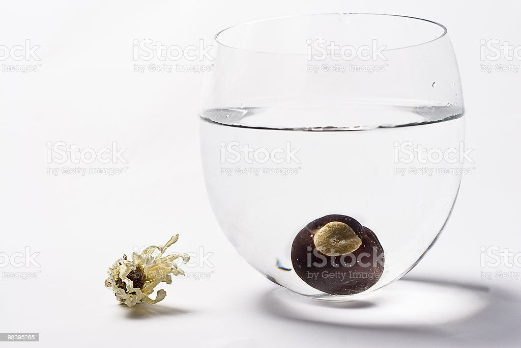 One sunk nut royalty-free stock photo