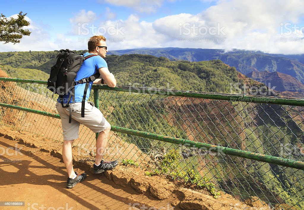 One tourist looking at view of Waimea Canyon stock photo