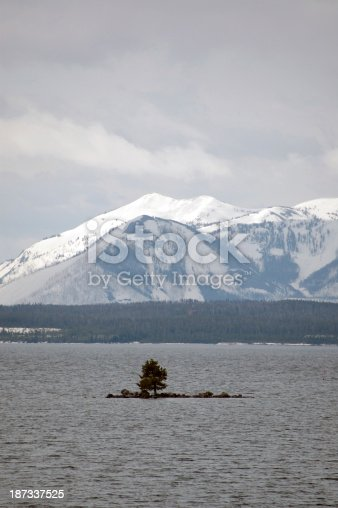 istock One Tree Island in The Middle of Lake Yellowstone 187337525