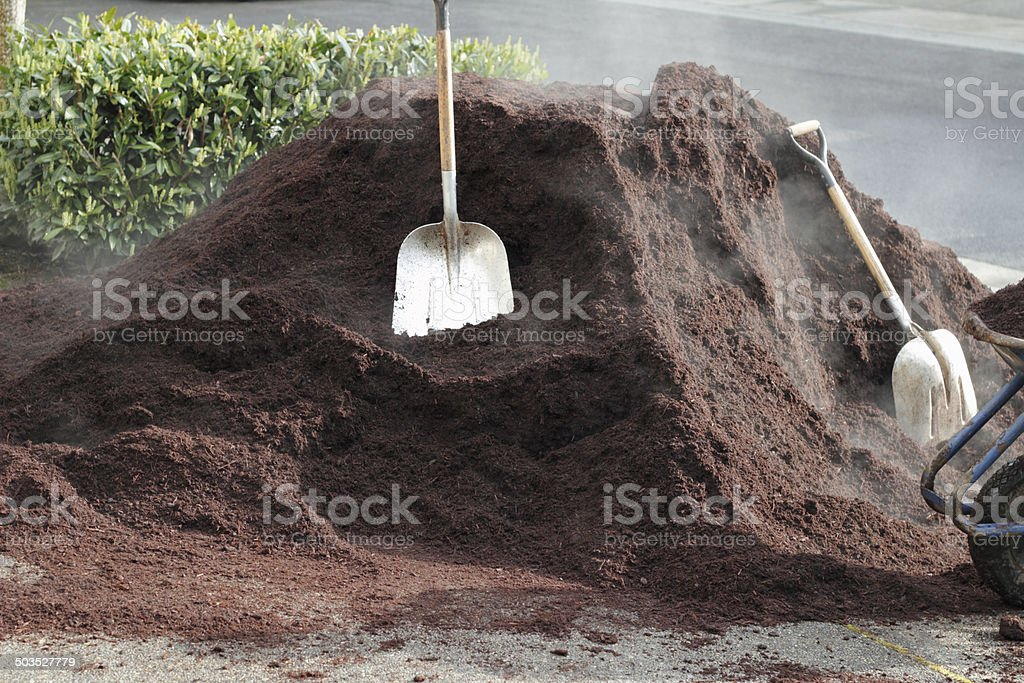 One Unit of Hemlock Bark Dust stock photo