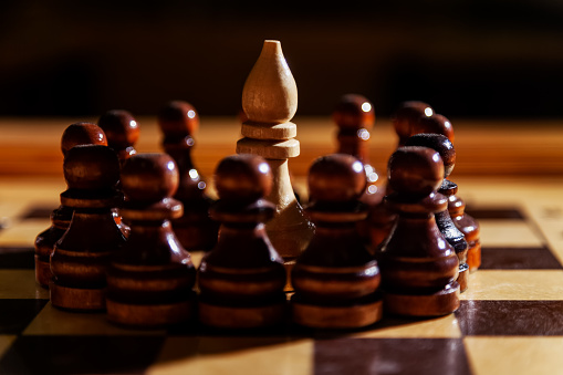 One white chess officer among the black pawns. The concept of protests