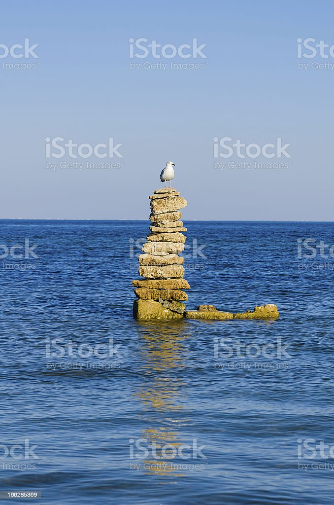 one white seagull stending on stability stones in a sea royalty-free stock photo